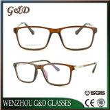 Bâti optique de monocle en plastique de lunetterie d'Ultem de qualité avec la tempe en aluminium Nw9016