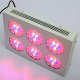 Hydroponik 270W gegen 600W HPS LED Grow Lights