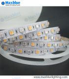 Lumière à bande LED utilisée le jour de Noël