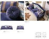 Il sofà del salone imposta D4+D2