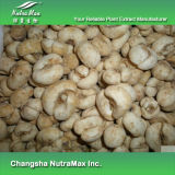 4:1 naturel d'extrait de fritillaire de 100% Thunbery, 8:1