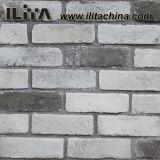 Tijolo da cultura do material de construção, pedra artificial de pedra do ofício (YLD-10078)