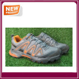 Heiße Verkaufs-Sport-Schuhe mit Qualität