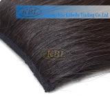 毛、人間の毛髪の拡張クリップのブラジル人