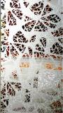 Краски здания искусствоа картины искусствоо окна двери опарника Tempered стеклянное декоративное