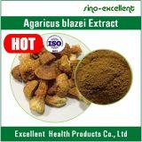 Poudre d'extrait de Blazei d'agaricus de polysaccharides de 40%