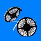 5050 tira impermeable del blanco LED con el tubo