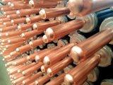 Un collettore solare dei 20 tubi popolare nel Brasile