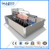 Caisse de cochonnée galvanisée de porc d'IMMERSION chaude à vendre de Chine