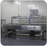 Бака печатной машины Tranfer воды '' x3.3 '' x4.8 '' Kingtop 4.0 моющее машинаа Semi автоматического гидрографического гидро окуная с нержавеющей сталью