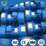 Horizontales eléctricos vibrantes famosos del uso del equipo vibran el motor