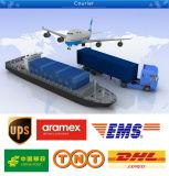 Serviço de entrega expressa de DHL a Sweden