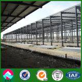 確認されるセリウムおよびISOの軽い鋼鉄ロジスティクスの倉庫(XGZ-A042)