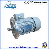 GOST Anp alta eficiencia IE2 motores de inducción