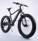 Bici elettrica della montagna dell'adulto 36V 250W con la batteria nascosta