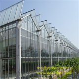 Парник Wenlo стеклянный с гальванизированной стальной структурой