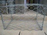 PVC покрыл горячие окунутые гальванизированные коробку Gabion/сетку Gabion