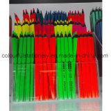 Matite enormi fluorescenti di colore di Hotsale
