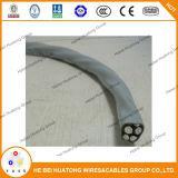 Aluminium de câble d'entrée de service de l'UL 854/type de cuivre expert en logiciel, type R/U Seu 2 2 4