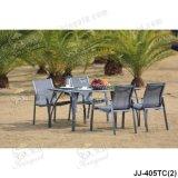 Garten-Möbel, im Freienmöbel (JJ-405TC)