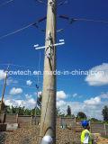 Lockere Kabel-Speicher-Zahnstange für Polen