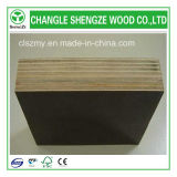 21mm Building Concrete Film Faced Plywood
