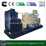 Generatore del biogas del Cummins Engine 300kw nel migliore prezzo