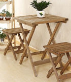Festes Wood Folding Table mit Highquality (M-X3006)