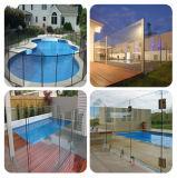 vetro temperato libero di 12mm/vetro Tempered impregnato calore per la piscina