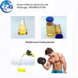 Stéroïdes Sûr-Rapides Boldenone Udecylenate de la distribution de pureté de 99%