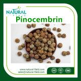 Het natuurlijke Uittreksel Pinocembrin CAS 480-39-7 van de Kardemom