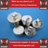N35 N45 N48 N52 permanenter zylinderförmiger Neodym-Eisen-Bor-Magnet