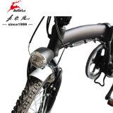 """16 """" 알루미늄 합금 프레임 검정 소형 작풍 접히는 E 자전거 (JSL016A-3)"""
