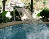 De Waterval van de Pool van de Mond van de Eend van het Roestvrij staal van het KUUROORD van het Zwembad