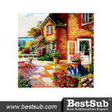 Bestsub cubrió el mosaico de la baldosa cerámica de la sublimación (CPT)