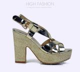 Sandali casuali della piattaforma del tessuto delle donne degli alti talloni della pelle verniciata della signora