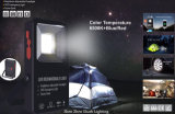 10W 휴대용 LED 플러드 빛