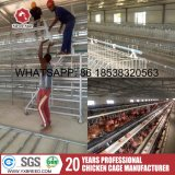 Оборудование цыплятины путем использование стали международного стандарта Q235 с сертификатом Ce