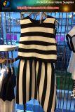 Hilado de monofilamento teñido de tela de rayas para el vestido, material de vestir