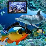 """7 """" لون [تفت] تحت مائيّ سمكة واجد [فيديو كمرا]"""