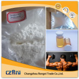 Hochwertiges rohes Puder Drostanolone Propionat CAS-Nr. 521-12-0