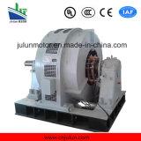 Motor eléctrico del motor de la serie del año (Abrir-tipo) de CA del motor del anillo colectando de la inducción asíncrona trifásica de alto voltaje de gran tamaño del motor