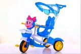 플라스틱 숫자를 가진 아기 Trike 세발자전거가 아이들 세발자전거에 의하여 농담을 한다