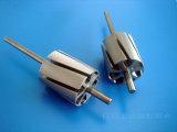 Мотор верхнего качества микро- разделяет ротор 8p