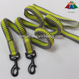 O tirante com mola do nylon/poliéster entrega a trela livre do cão para movimentar-se e andar de funcionamento