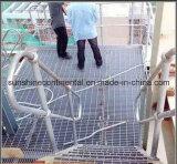 Grating van de Vloer van het Staal van de Loopbrug van de fabriek