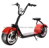 Bâti stable tout neuf avec scooter électrique de Harley de batterie de pouvoir du frein à disque le grand 12A