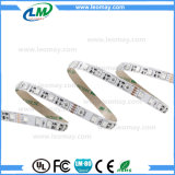 Streifen-Licht der Partei-Beleuchtung-SMD5050 LED mit 2 Jahren Garantie