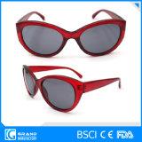Grandi occhiali da sole all'ingrosso dell'obiettivo del nero scuro del blocco per grafici per le donne