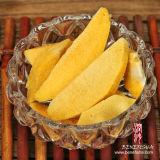 Getrockneter Frost trägt gelber Pfirsich in der Qualität Früchte
